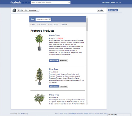 View a demo of the facebook Template Package