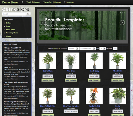 View a demo of the fossil Template Package