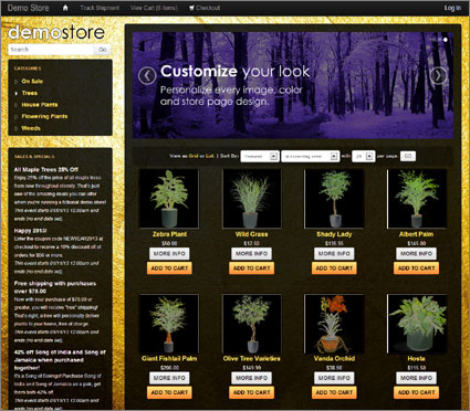 View a demo of the gold beach Template Package