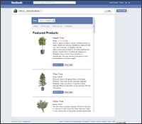 Get the FACEBOOK shopping cart template
